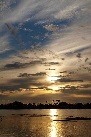 Swirling in the sky by ♥⊱ B. Randi Bailey