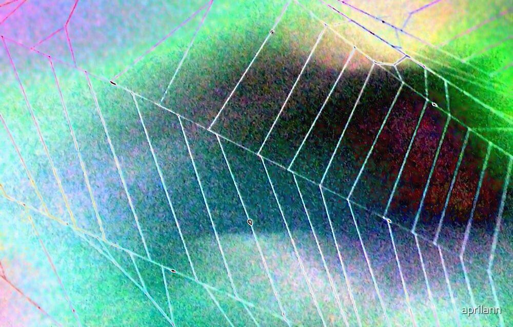 Colored Foil Spider Web by aprilann
