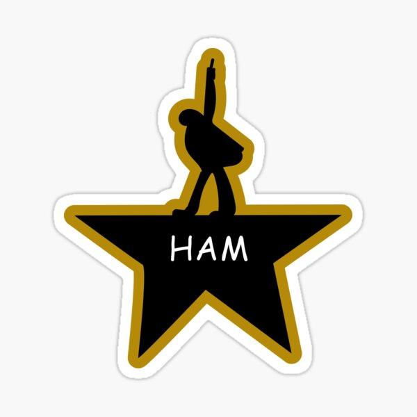 Ham Star Drawing Sticker