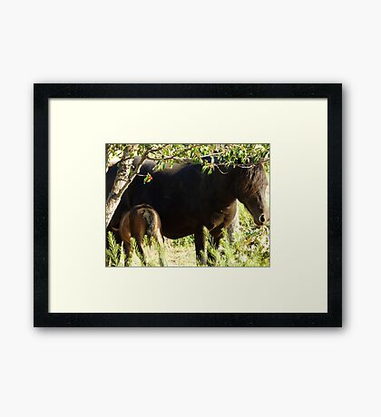 A Watchful Mother Framed Print
