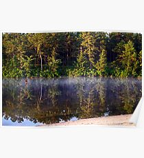 Bald Eagle Over Harry Wright Lake Poster