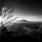 The Eildons, From Scott's View, Scottish Borders by Iain MacLean