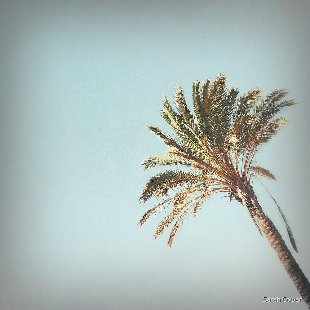 Palm by Sarah Cowan