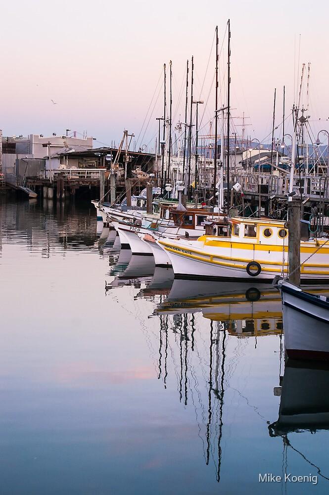 Fisherman;s Wharf Harbor, San Francisco by Mike Koenig