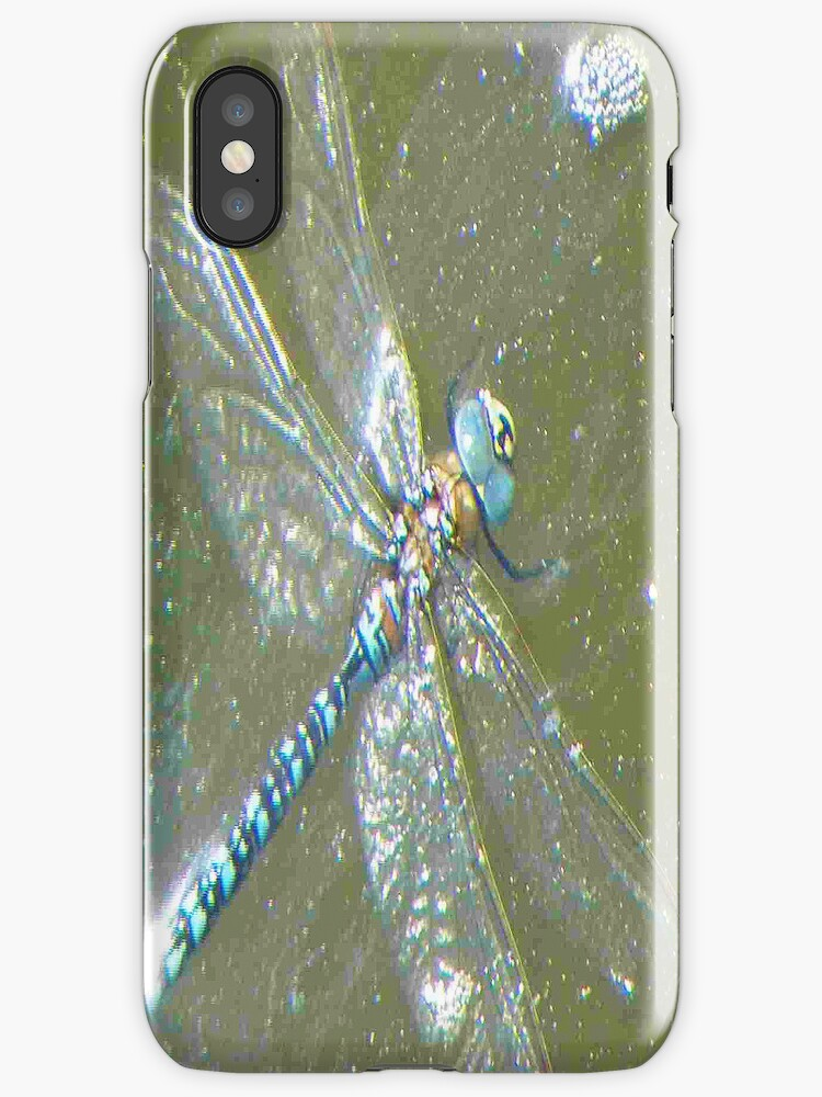 Dragonfly - iPhone Case by Betty  Town Duncan