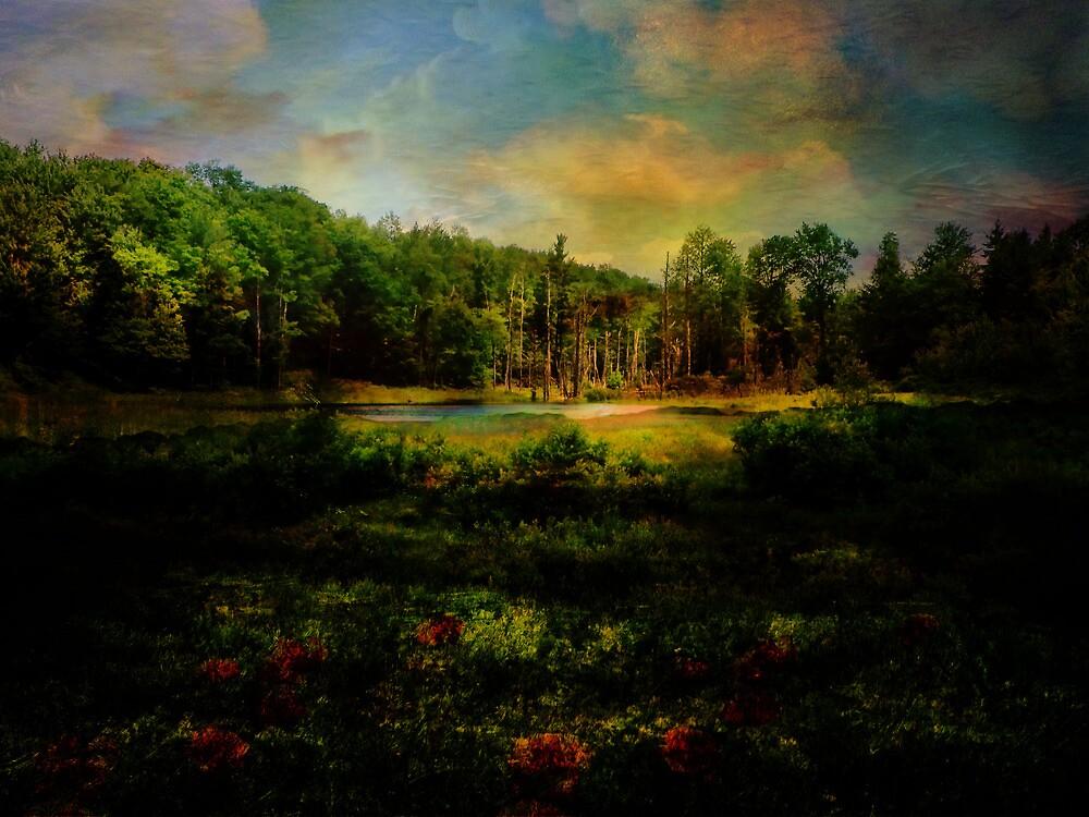 Light on the Marsh by PineSinger