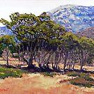 Eucalyptus Grove 2 Harbors Catalina Island by Randy Sprout