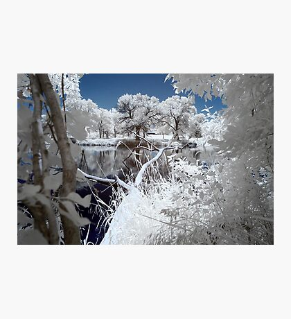 Infrared One Photographic Print