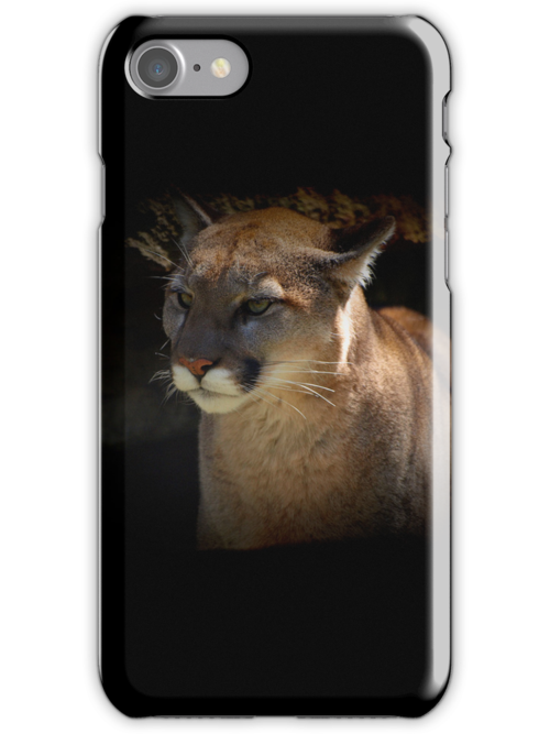 Mountain Lion Cougar Wildlife Gifts by NaturePrints