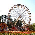 Ferris Wheel Joy by NinaJoan