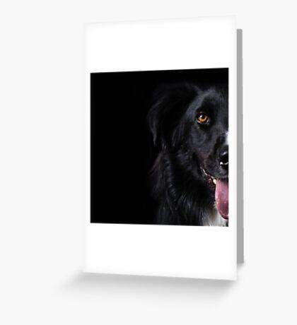 Half a dog Greeting Card