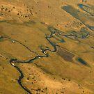 Okavango Delta by Paul Tait