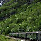 The Flam railway by Steve plowman