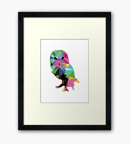 pbbyc - Triang-Owl Framed Print