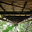 Under a Walking Bridge by lindsycarranza