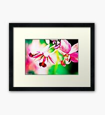 Water-colours painting by a camera:) Framed Print
