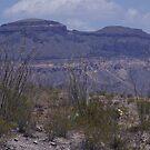 Rock Formations - US-Mexico Border - Rio Grande - Lajitas - West Texas by seymourpics