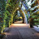 The Garden Path by Luke Griffin