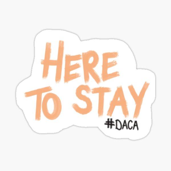 DACA Here to Stay Sticker