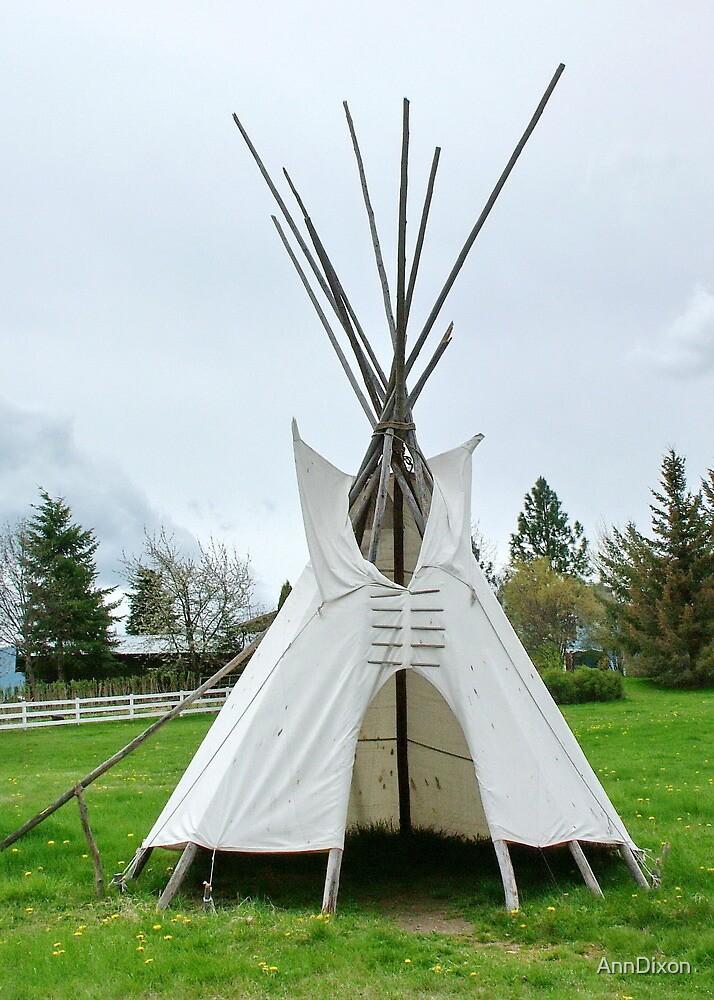 Wigwam in Idaho by AnnDixon