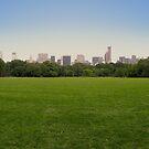 NY in 20 pics: #12 by Puchu
