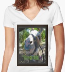 Irresistible Women's Fitted V-Neck T-Shirt