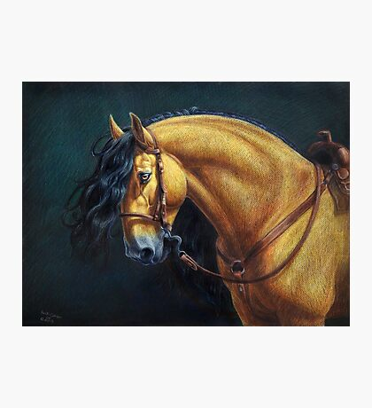Warlander Stallion Photographic Print