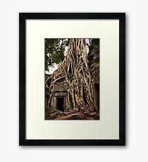 Cambodia - Angkor - Ta Prohm  #06 ... location for film Tomb Raider Framed Print