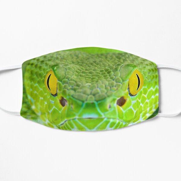 Green Snake Mask