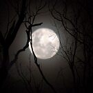 Super Moon - 23 June 2013   9pm - Gippsland by Bev Pascoe