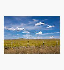 Rural scene. Photographic Print