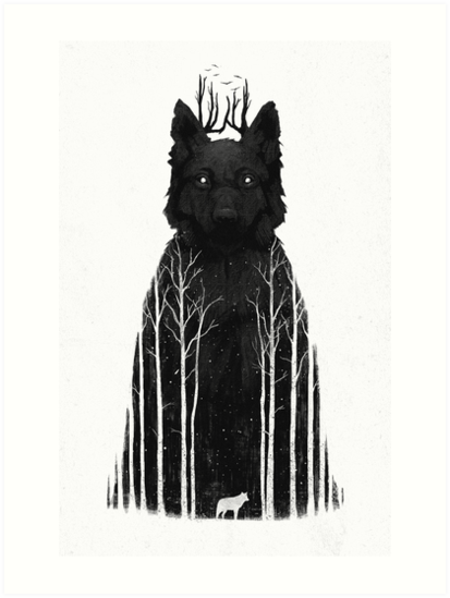 The Wolf King by Dan  Burgess