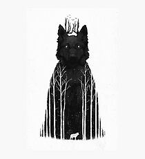 The Wolf King Photographic Print