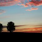 Cotton Candy Sunset by Estell