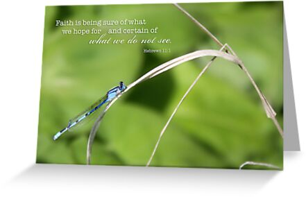 Damselfly – Faith – 2:3 by Janelle Wourms