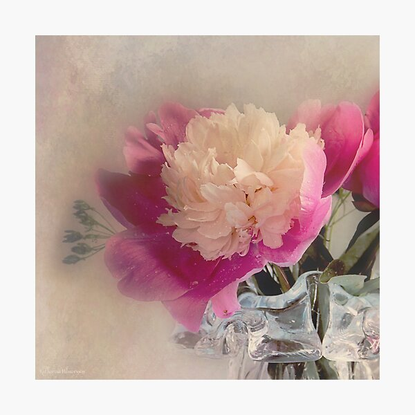 Soft peone Photographic Print