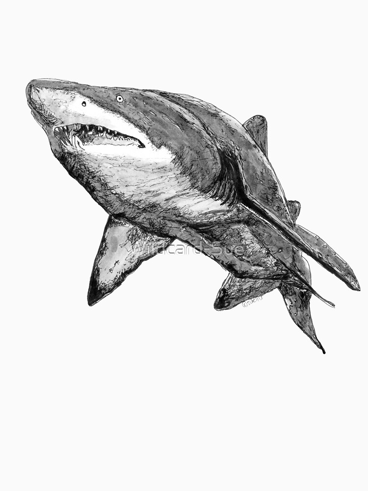 Nancy the Grey Nurse Shark by Wildcard-Sue