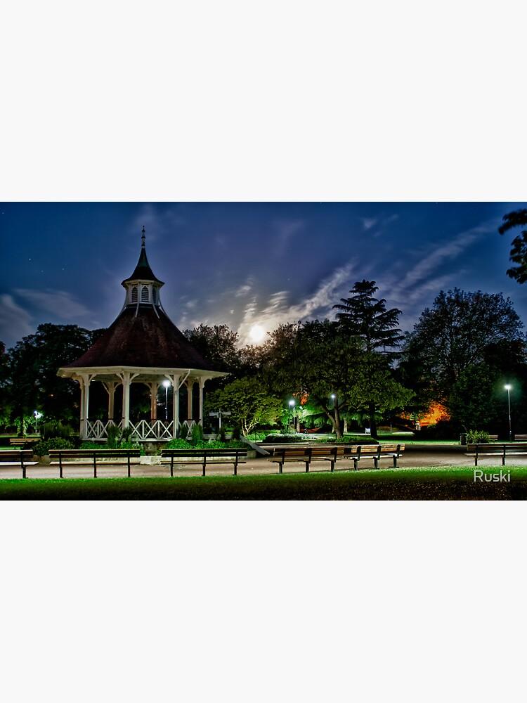 Supermoon Over Chapelfield Gardens by Ruski