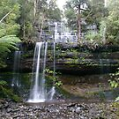 Russell Falls by DEB CAMERON