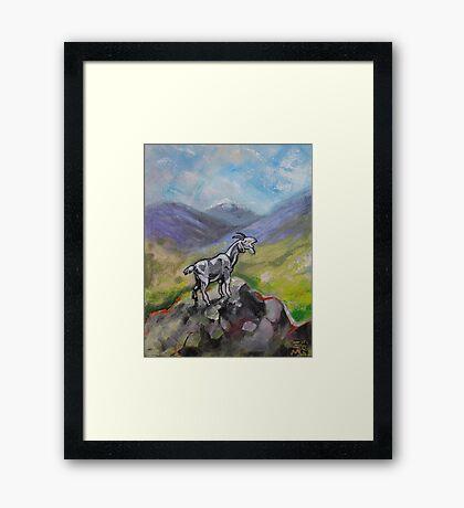 The Goat Framed Print