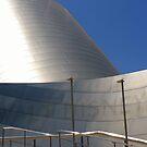 Walt Disney Concert Hall by Barbara Morrison