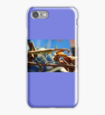 Praying Mantis on a Stick iPhone Case/Skin