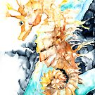 Dreaming Of A Seahorse  by Barbara Pommerenke
