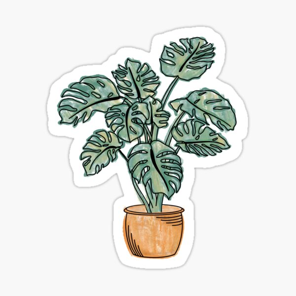 Watercolor potted monstera plant  Sticker