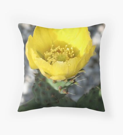 Opuntia Ficus-Indica (Flower of the Prickly Pear) Throw Pillow