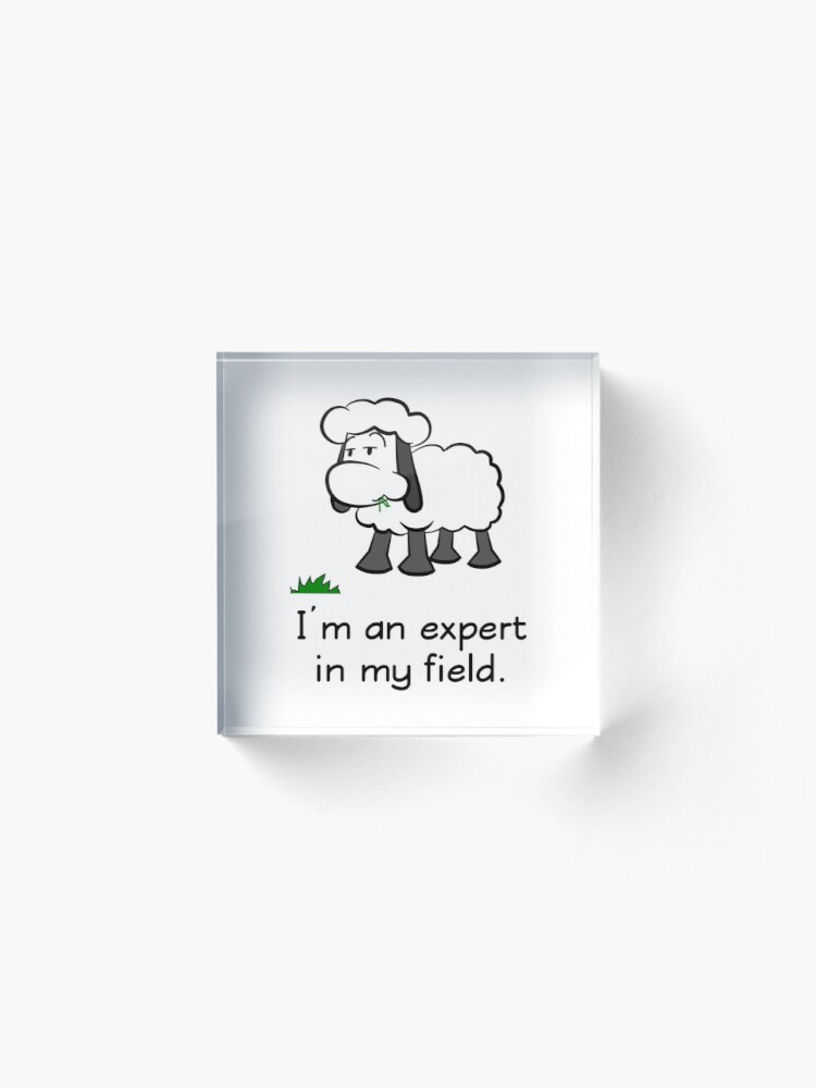 Alternate view of I'm an expert in my field. Acrylic Block