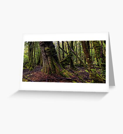 The clearest way to the Universe is through a forest wilderness Greeting Card