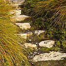 Cradle Valley Steps by pennyswork