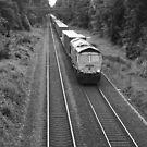 Evening Freight Train by Thomas Adams