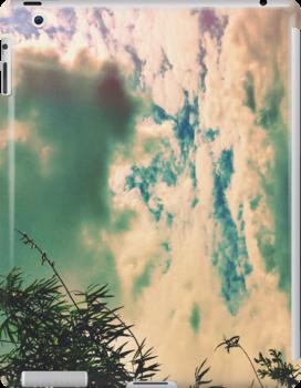 Sky by Niralee Modha